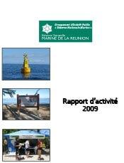 rapport_activite_2009_gip_rnmr.jpg