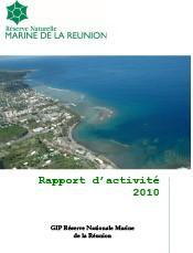 rapport_activite_2010_gip_rnmr.jpg
