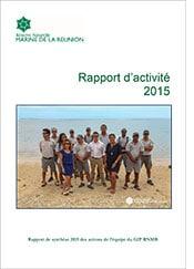 rapport_activite_2015_GIP_RNMR.jpg