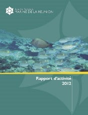 rapport_d_activite_gip_rnmr_2012.jpg
