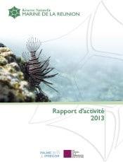 rapport_d_activite_gip_rnmr_2013.jpg